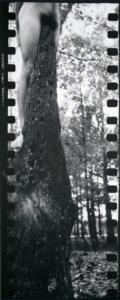 IMGP1981